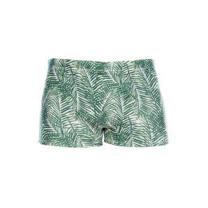 sunga-boxer-folhas-verde-still-547742.jpg