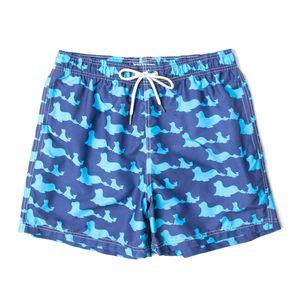 576.411-focas-azul