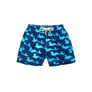 576.413---Short-Infantil-Estampado-Shorts-Co-Focas-Azul